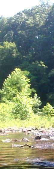 Davy Crockett State Park's Shoal Creek in Lawrenceburg, TN