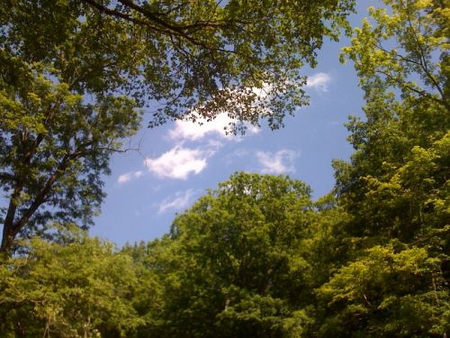 Davy Crockett State Park in Lawrenceburg, TN