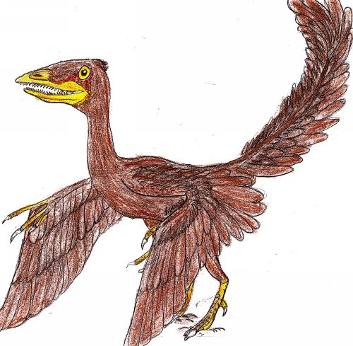 Archaeopteryx lithograph by el Fosilmaniaco