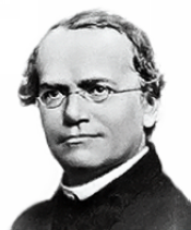Gregor Mendel