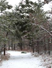 Snowy path in Selmer