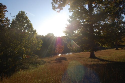 Sunset at Rose Creek Village by Nichole Park