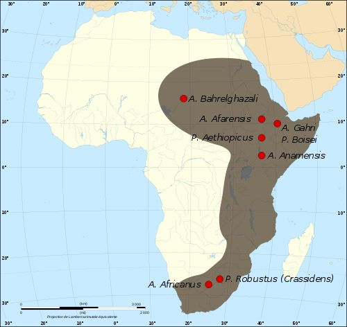 Map of early hominid sites in east and south Africa