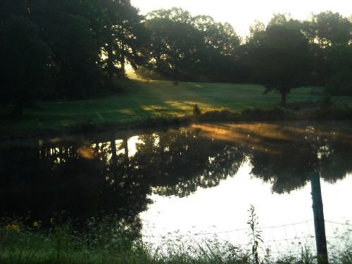 Pond in Selmer, Tennessee